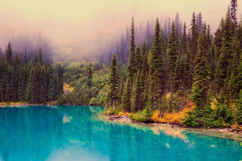 Kanada nabízí nádhernou přírodu